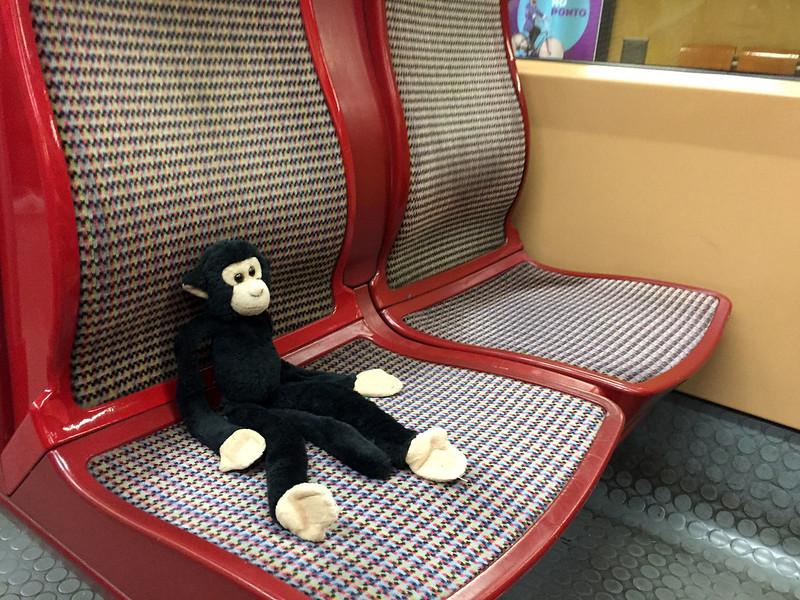 Monkey on the Lisbon Metro