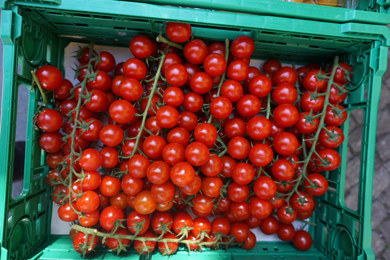 tomatos at Thun farmers market