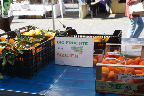 Thun farmers market