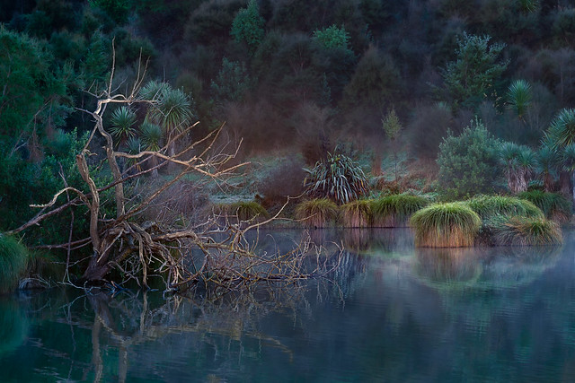 Mystic Calm at Lake Lopez