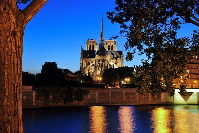 Cathédrale Notre Dame de Paris at blue hour (before the fire )