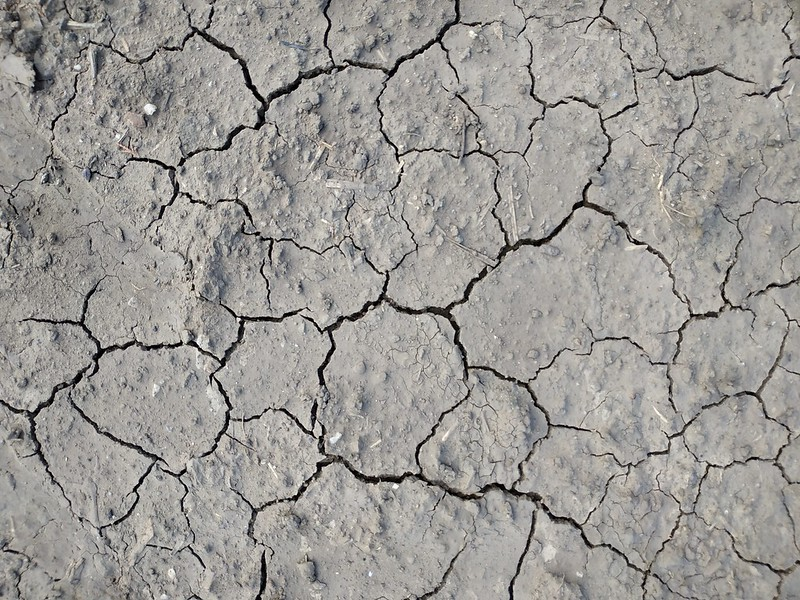 Cracked ground texture 02 - by texturepalace