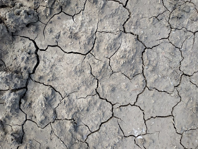 Cracked ground texture 03 - by texturepalace
