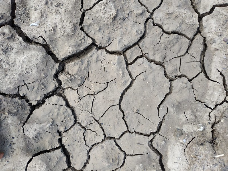 Cracked ground texture 01 - by texturepalace