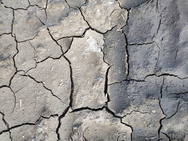 Cracked ground texture 07 - by texturepalace