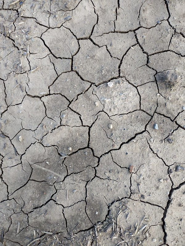 Cracked ground texture 05 - by texturepalace