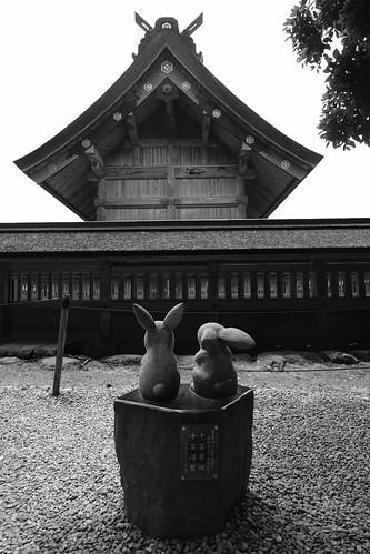 02-06-2019 Izumo, Shimane pref (21)