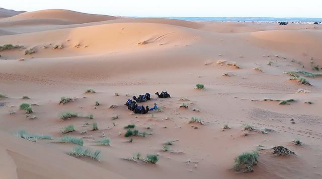 Morocco. Sachara 07