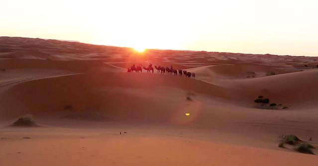 Marocco. Sachara 11