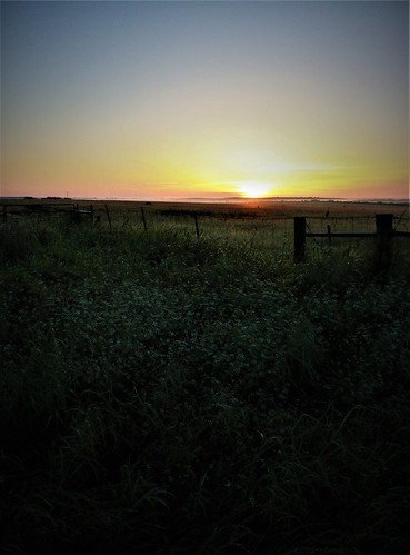sanmarcos martindale luling wimberley texas morning morming fence fences post grass green blue yellow sun rise sunrise sky horizon field may sunday trip travel road side
