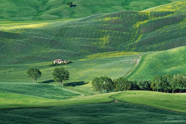 Greens of Tuscany