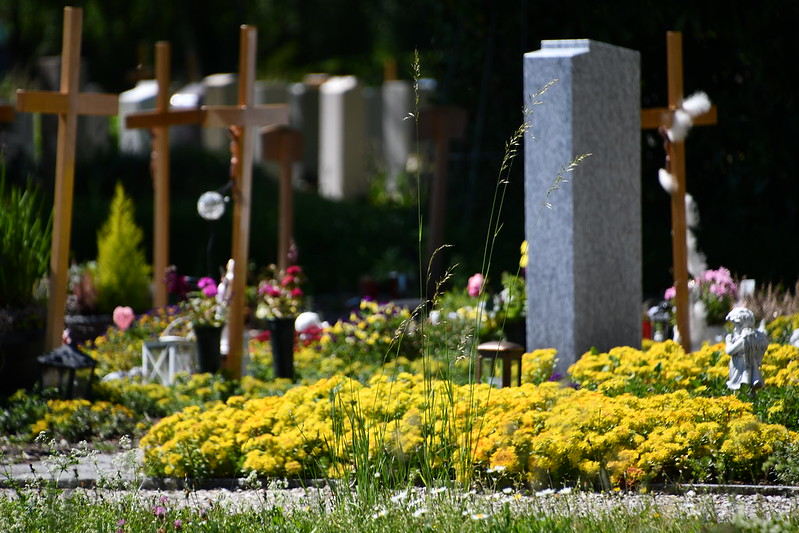 Solothurn Cemetery 02.06 (3)