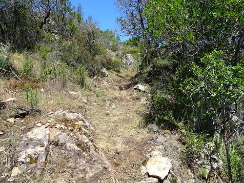 Le chemin vers l'arrivée à la piste de Luviu