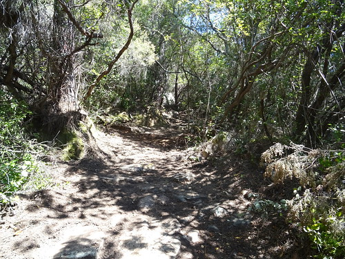 Le chemin après la carbunara