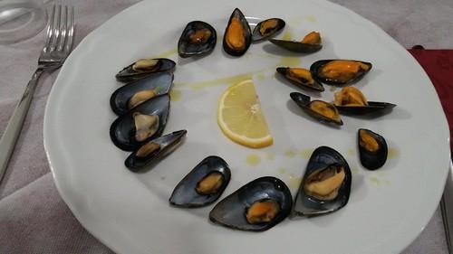 cozze di mare italiane contaminate