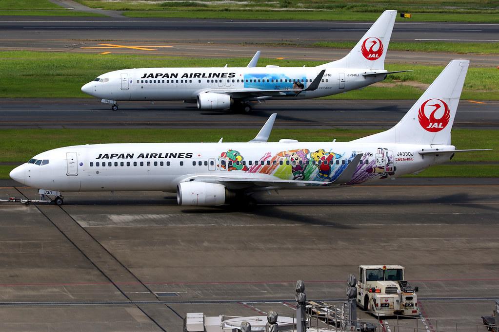 Japan Airlines | Boeing 737-800 | JA330J | Shimajiro Jet livery | Tokyo Haneda