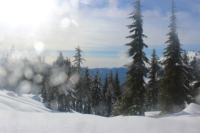 Wintry Cascades