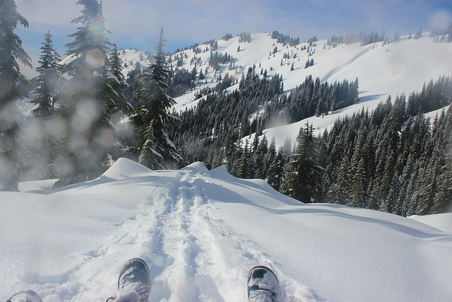 Snowshoeing Excelsior
