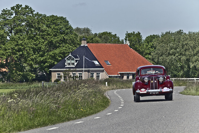 In the Frysian countryside ... (5402)