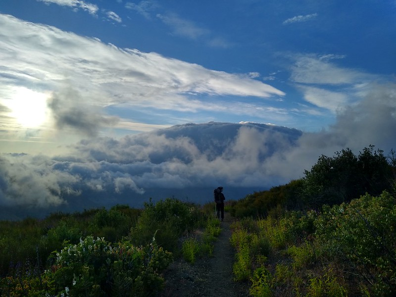 Brisk winds and a cool day in the clouds on the PCT