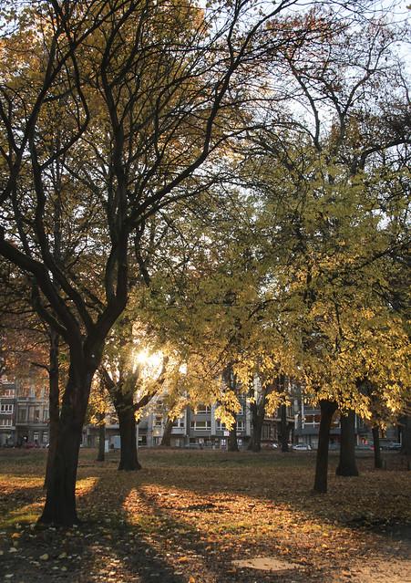 Parc d'Avroy, Liege
