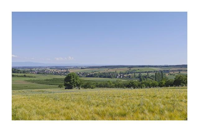 Alsace du Nord