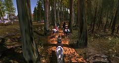 Bellisseria Riding Club
