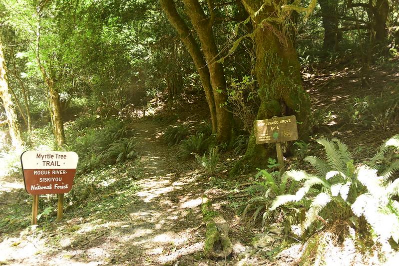 Myrtle Trail