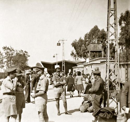 May 1942 - Australian Army Movement Control 1-2 Group Driver Jack Mingramm at El Kantara station, Egypt