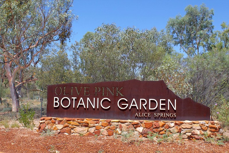 top 50 places to visit in Alice Springs