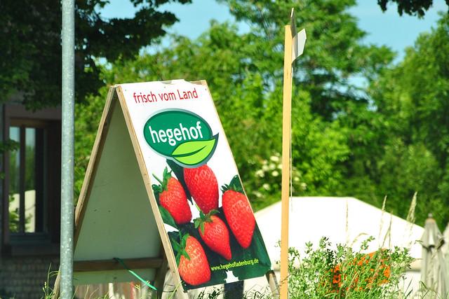 Juni 2019 ... Obst und Gemüse von Hegehof Ladenburg ... Foto: Brigitte Stolle