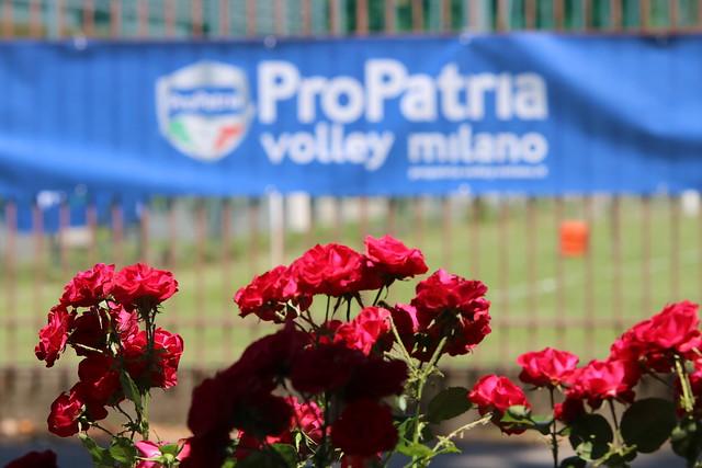 14° Trofeo Bracco Pro Patria Volley Milano Centro Pavesi 1 Giugno 2019