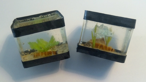 [Vente] Miniatures alimentaires et aquariums 47992840253_5e3777ebfb_o