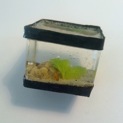 [Vente] Miniatures alimentaires et aquariums 47992885051_47b1b094e5_o