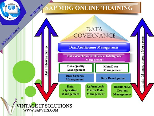 SAP MDG Training in Bangalore