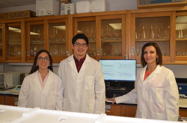 Maria Celeste Iglesias, Diego Gómez Maldonado, and Maria Soledad Peresin