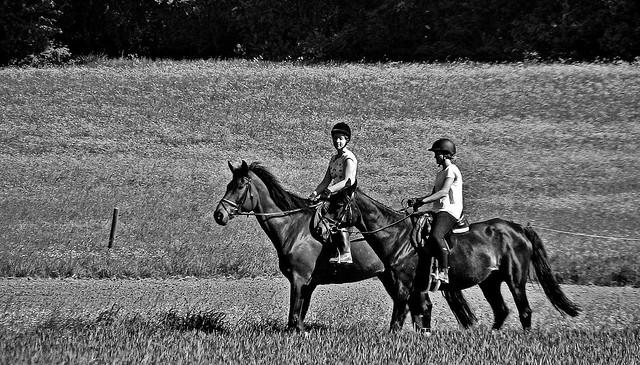 Germany, Warmbronn,  Auf dem Rücken der Pferde... 76682/11553