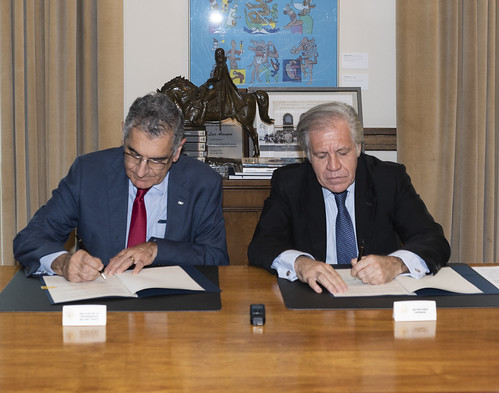 OAS to Provide Training to University of Sao Paulo on Electoral Observation