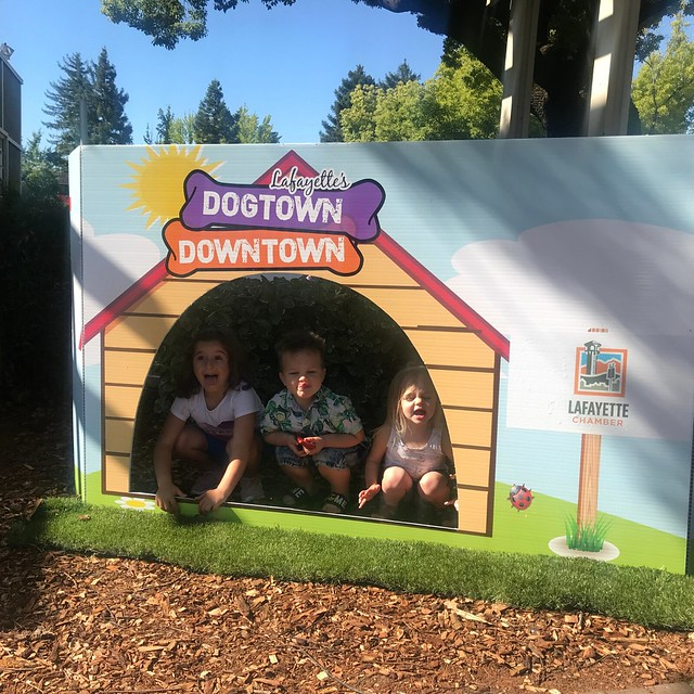 June 1, 2019 - Dogtown Downtown