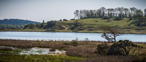 denmark denemarken danmark jylland vestjylland jutland westjutland cimbricpeninsula cimbrianpeninsula outside outsideisfree sevel stubbergårdsø sø lake geoparkvestjylland iceagelandscape view