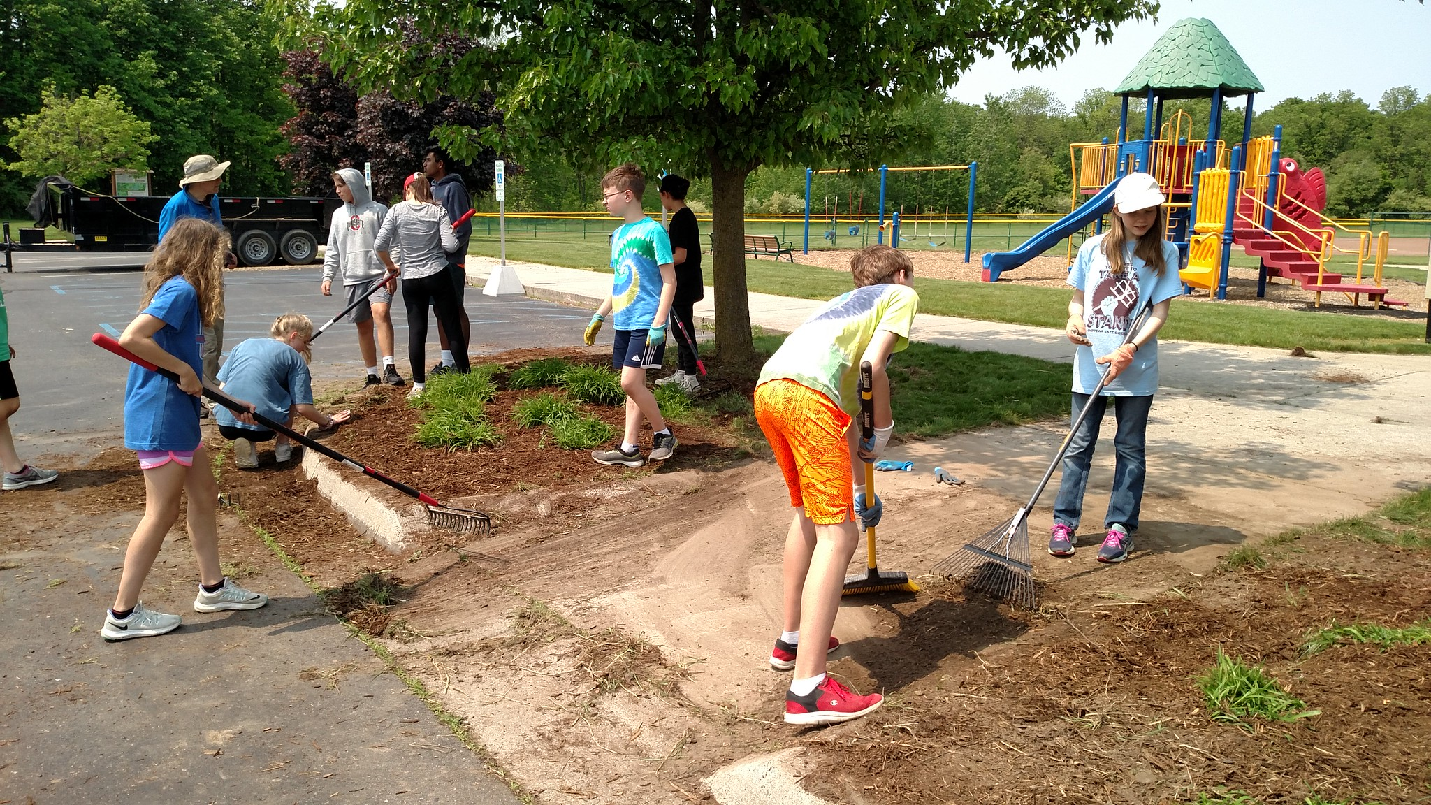 Students Remove Invasive Weeds in Local Community