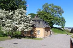 Oslo 05