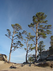На вершине горы Болектау