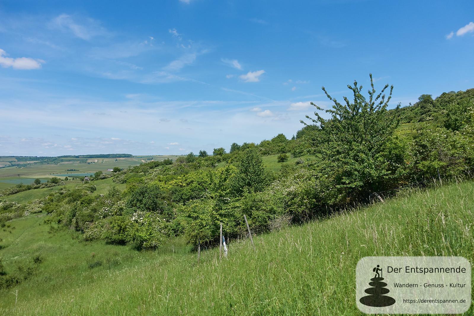 Naturschutzgebiet am Wissberg