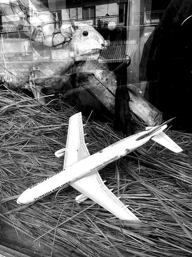 emissions aérien transport avion gaz climatique réchauffement polémique durabilité déplacement technologie rapidité trajet vitesse pollution effet serre