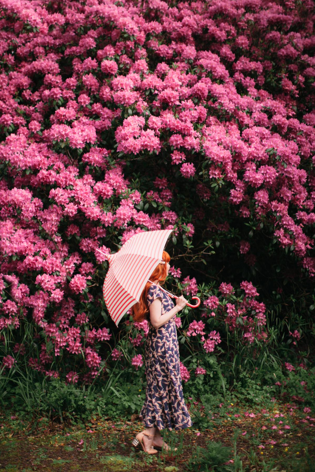 rainy day-4