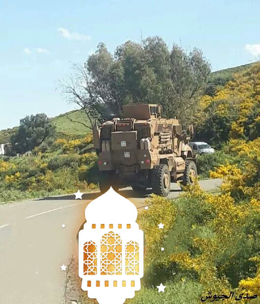 MRAP MAXXPRO Navistar في الجزائر 47997130982_79c1fde177_b