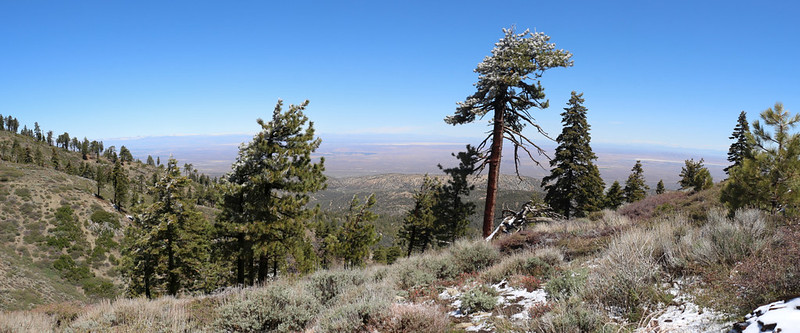 View north over the Mojave Desert toward El Mirage from the PCT on Blue Ridge