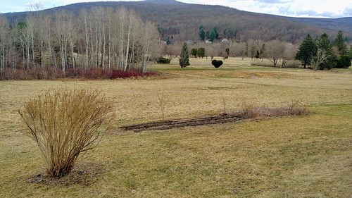 Garden Time Lapse - 4/13