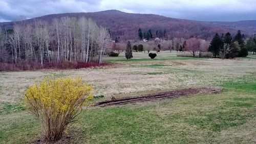 Garden Time Lapse - 4/20